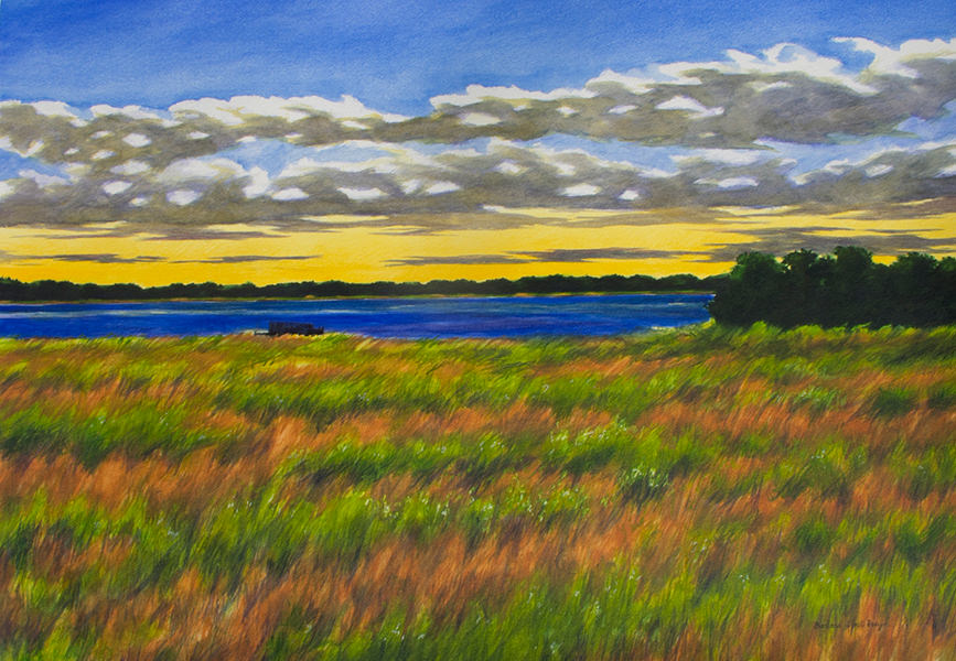 Field of Color 30x42