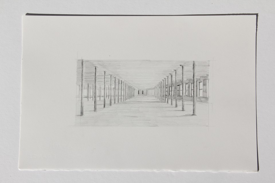 Pencil Study, 8.25 x 14 inches